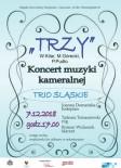Plakat koncert kamer_edited-1
